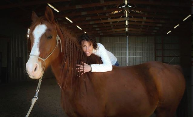 Dr. Emily Mcleod - Equine Chiropractor