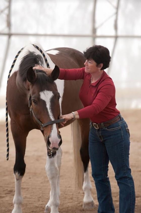 Rhonda Martin - Equine Performance Therapy