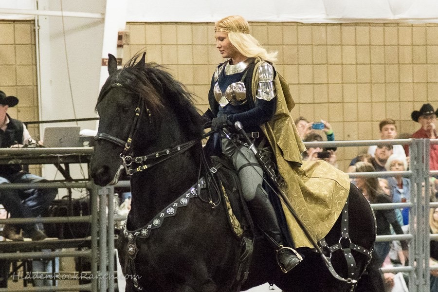 Royal Friesians